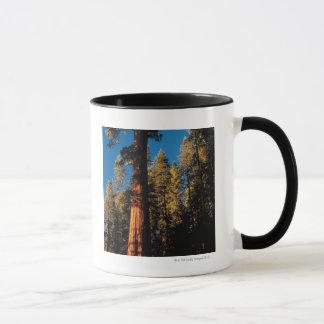 Parc national de séquoia, la Californie 2 Mug