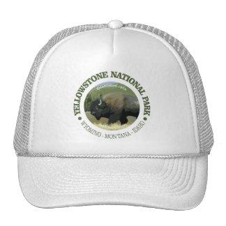 Parc national de Yellowstone (bison) Casquette