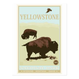 Parc national de Yellowstone Carte Postale