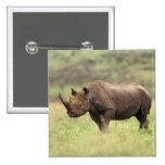 Parc national du Kenya, Nairobi. Rhinocéros noir Pin's