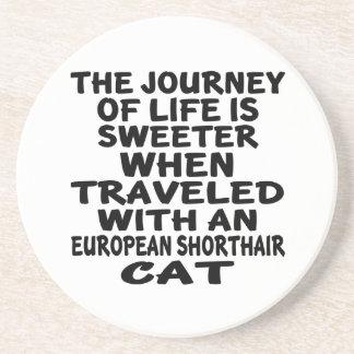Parcouru avec le chat de Shorthair d'Européen Dessous De Verre