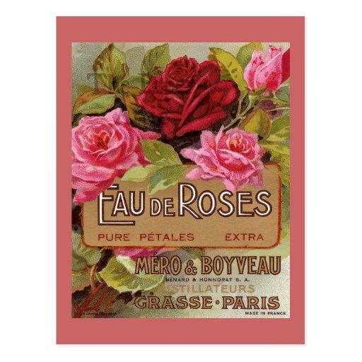 Parfum d'Eau De Roses French Cartes Postales