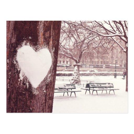 Paris, ville of love (Notre Dame gardens) Carte Postale