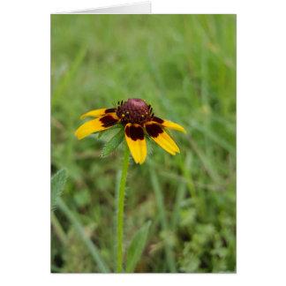 Parmi les cartes pour notes de fleurs sauvages