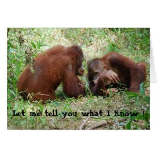 Partage des amis d'orang-outan de bavardage carte de vœux
