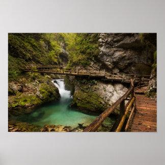 Passage couvert en bois par le canyon de gorge de poster