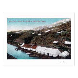 Passage et train de chemin de fer blancs du Yukon Carte Postale