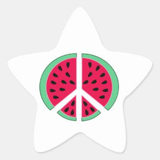 Pastèque de paix sticker étoile