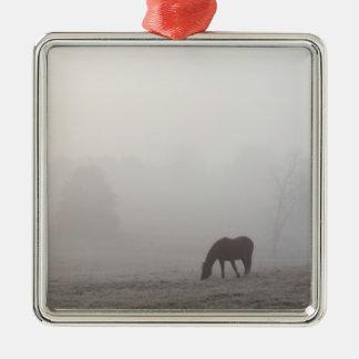 Pâturage brumeux ornement carré argenté