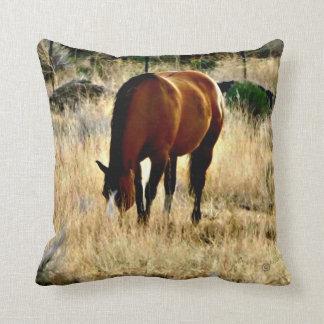 coussins images de cheval. Black Bedroom Furniture Sets. Home Design Ideas
