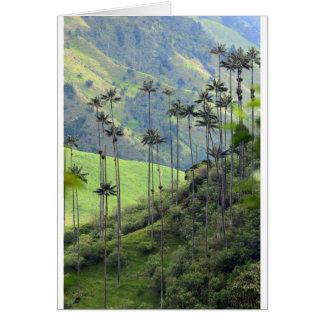 Paumes de cire de Qunidio en vallée de Cocora Carte De Vœux