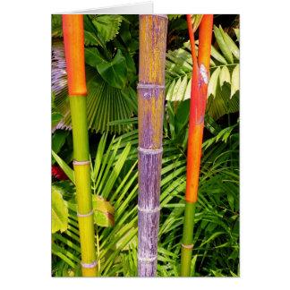 Paumes de cire tropicales carte de vœux