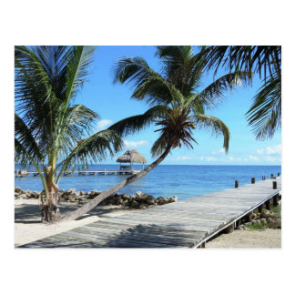 Paumes et pilier à Belize Carte Postale