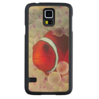 Paupau Nouvelle-Guinée, la Grande barrière de Coque Slim Galaxy S5 En Érable