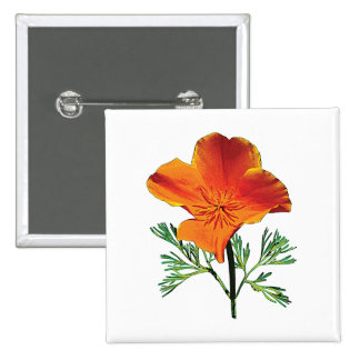 Pavot de Californie orange Badges