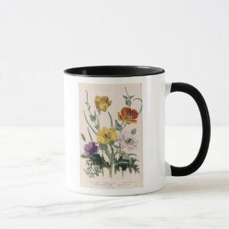 Pavots et anémones mug