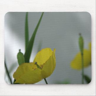 Pavots et ombre 6 tapis de souris