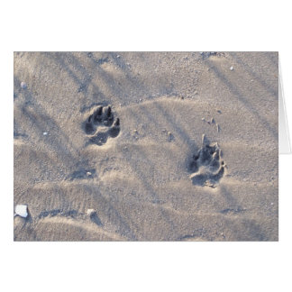 Pawprints dans la carte de sable