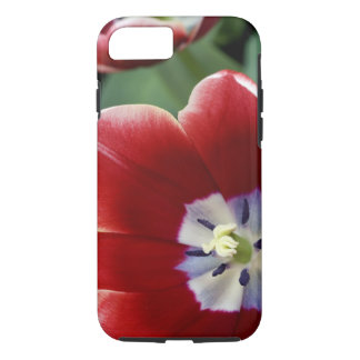 Pays-Bas (aka Hollande), Lisse. Keukenhof 3 Coque iPhone 7