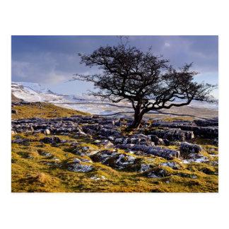 Pays de chaux, la carte postale de vallées de