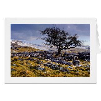 Pays de chaux - les vallées de Yorkshire Carte De Vœux