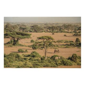 Paysage africain avec l'éléphant impression sur bois