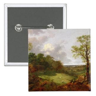 Paysage boisé avec un cottage, des moutons et un R Pin's