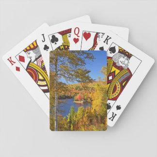Paysage d'arbre d'automne, Maine Jeu De Cartes