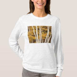 Paysage d'automne, Vermont, Etats-Unis T-shirt