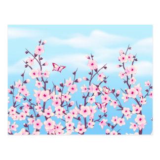 Paysage de fleurs de cerisier carte postale