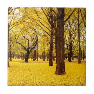 Paysage de forêt de chute petit carreau carré