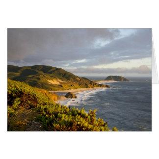 Paysage de parc national de Poin Lobos Carte De Vœux