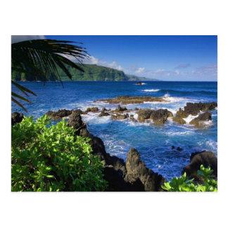 Paysage de plage d'Hawaï Carte Postale