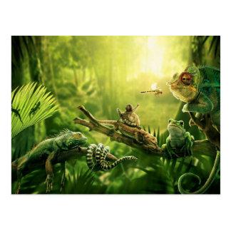 Paysage de reptiles de jungle de grenouilles de cartes postales