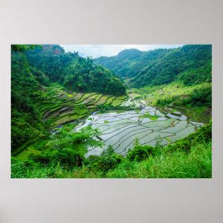 Paysage de terrasse de riz, Philippines Poster