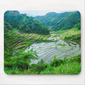Paysage de terrasse de riz, Philippines Tapis De Souris