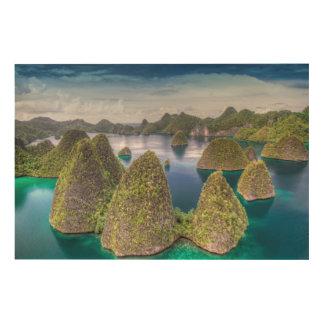 Paysage d'île de Wayag, Indonésie Impression Sur Bois