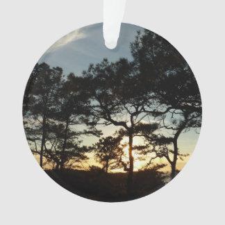 Paysage du coucher du soleil II la Californie de