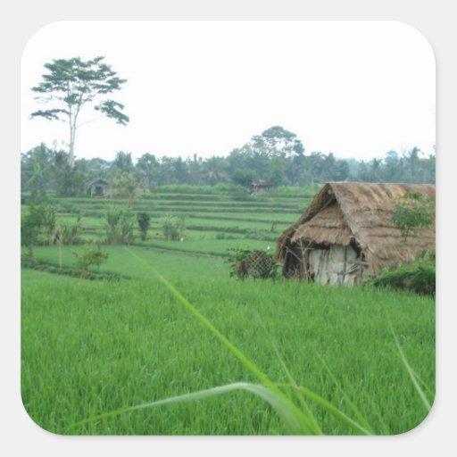 Paysage du Vietnam Sticker Carré