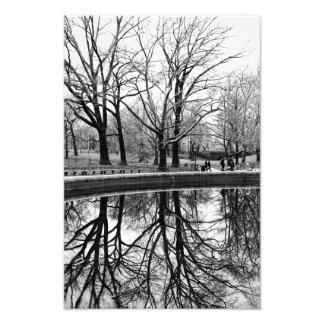 Paysage magnifique d'hiver dans le Central Park Photos