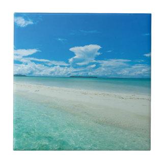 Paysage marin tropical bleu, Palaos Carreau