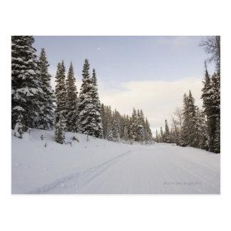 paysage Neige-couvert Carte Postale
