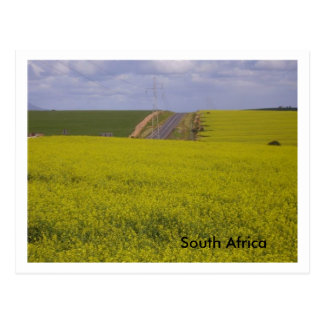 Paysage sud-africain carte postale