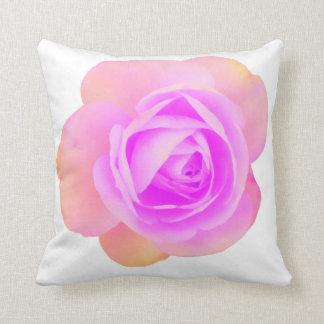 Pêche et coussin de rose de rose