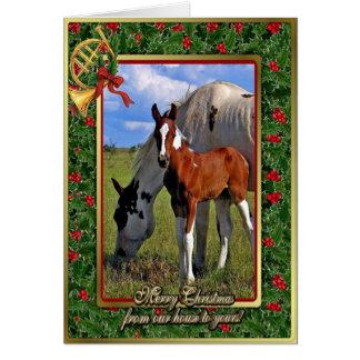 Peignez la jument de cheval et poulinez carte