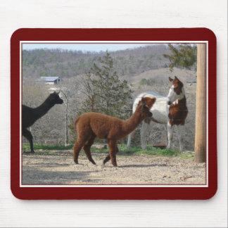Peignez l'alpaga Mousepad de cheval Tapis De Souris