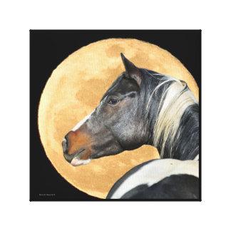 Peignez le cheval avec la copie de toile de pleine