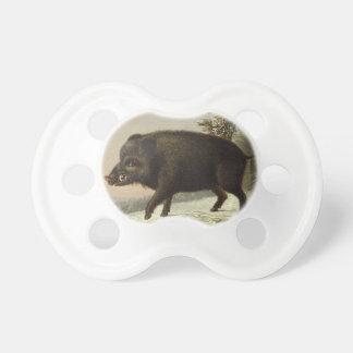 Peinture allemande vintage de porc de verrat sucettes pour bébé