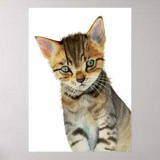 Peinture d'aquarelle de chaton de Shorthair Poster