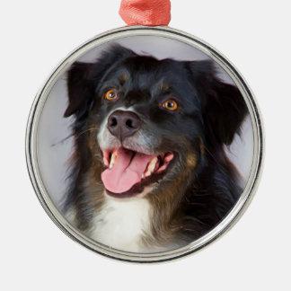 Peinture de chien - art de chien - choyez l'art ornement rond argenté